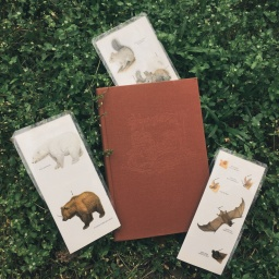 DIY Nature Bookmarks