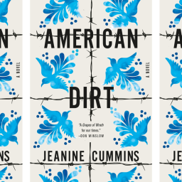 The American Dirt Controversy